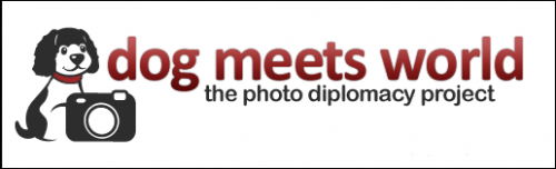 Dog Meets World – Phodography, Charity, and Travel
