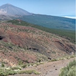 Travel to Spain's Canary Islands – Episode 294