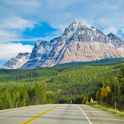 11 Great Road Trips