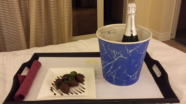 Champagne and Strawberrys at the Marriott, San Juan Puerto Rico