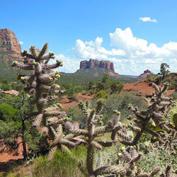 Sedona from Vegas Day Tour – Lessoned Learned