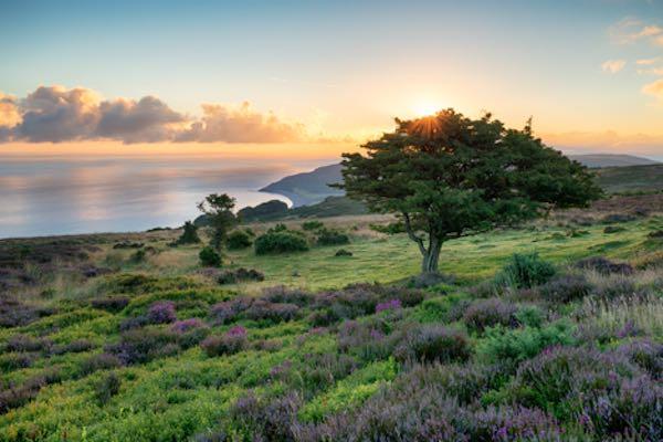 Exmoor National Park - England