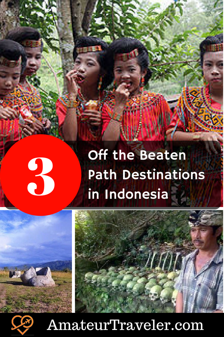 3 Off the Beaten Path Destinations in Indonesia #travel #Sulawesi #Bali