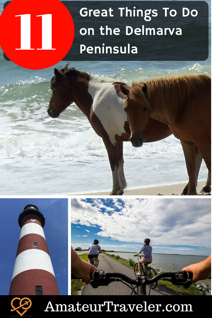 11 Great Things To Do on the Delmarva Peninsula #travel #virginia #maryland #delaware #Assateague #Chincoteague
