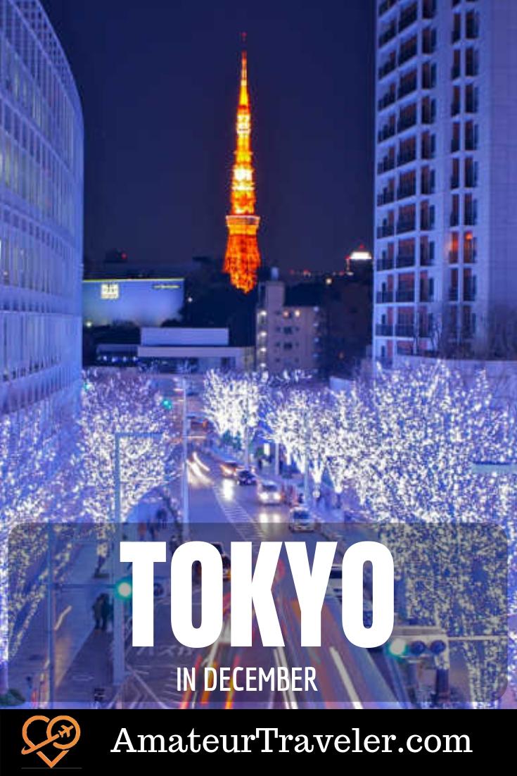 What to do in Tokyo in December #tokyo #japan #december #travel