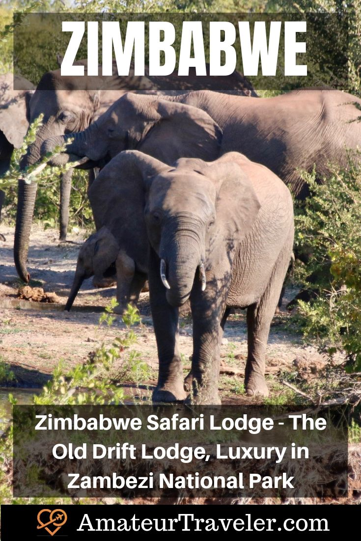 Zimbabwe Safari Lodge - The Old Drift Lodge, Luxury in Zambezi National Park | Africa Safari Lodge #travel #trip #vacation #africa #safari #lodge #zimbabwe #victoria-falls #wildlife #interior #bedroom #elephant #hippo #food #zambezi