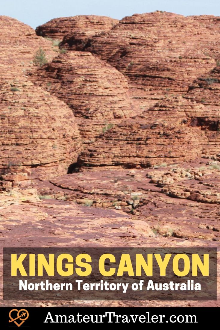 Palm Valley and Kings Canyon in the Northern Territory of Australia #things-to-do #northern-territory #australia #hiking #camping #travel #trip #vacation #beautiful #dingo #road-trip #kings-canyon #palm-valley