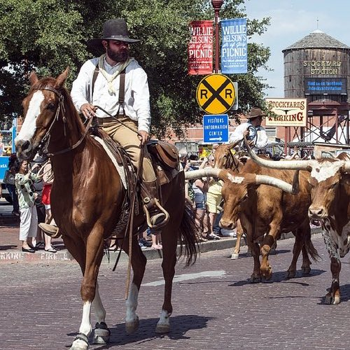Texas Road Trip – What to see in the Lone Star State