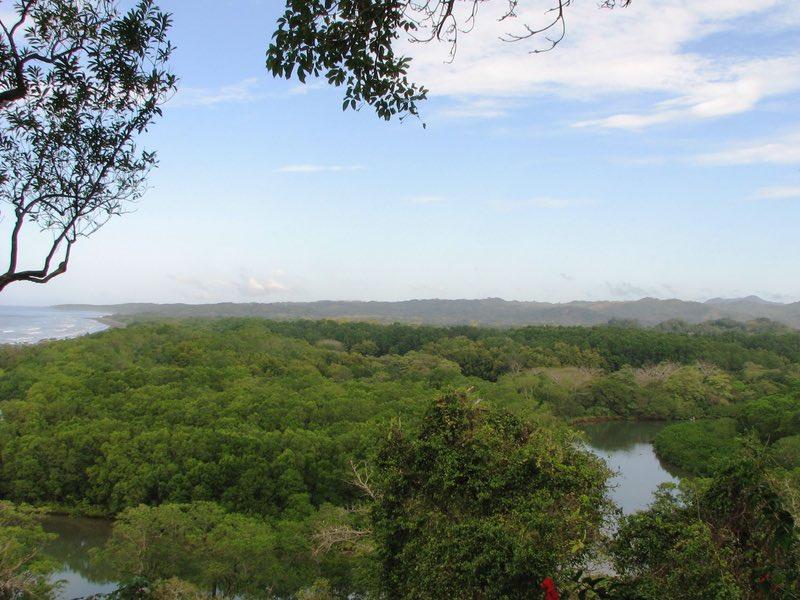 View from Lagarta Lodge of Nosara Rive