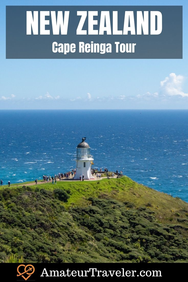 Cape Reinga Tour | 90 Miles Beach | Bay of Islands | #New-Zealand #things-to-do-in #itinerary #tour #bay-of-islands #tour #Cape-Reinga #sandboarding #beach #travel #trip #vacation