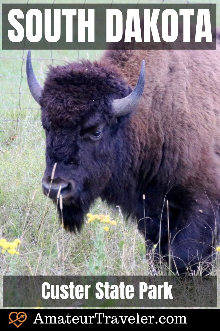 Road Trip to South Dakota and South Dakota National Parks | Things to do in the Black Hills of South Dakota | Mount Rushmore Vacation #travel #trip #vacation #south-dakota #usa #road-trip #mount-rushmore #custer-state-park #bison #deadwood #minuteman-missile #sylvan-lake #needles-highway #black-hills #wall-drug #rapid-city #things-to-do-in #badlands #hiking #spearfish-canyon