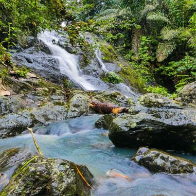 Jama Coaque Reserve Waterfalls - Ecuador