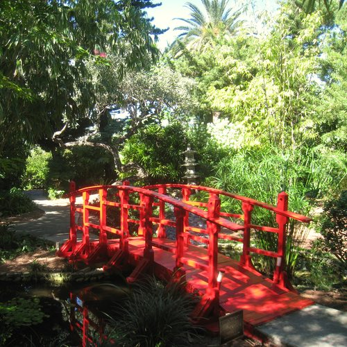 Botanical Gardens in Miami – The Best Ones to Visit