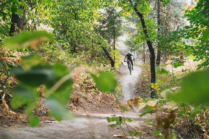 Mountain Bike Trails Near Portland