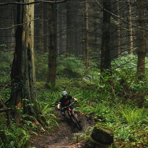Mountain Bike Trails Near Portland - Amateur Traveler