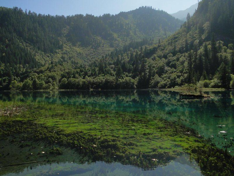 A clear mountain lake in Jiuzhaigou National