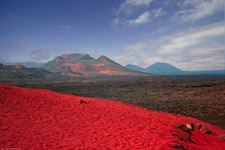 Travel To Lanzarote in the Canary Islands
