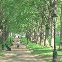 London, England – Hustle, Bustle and Calm – Video Episode 56